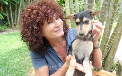 Sri Lanka: Hilfe für Mensch und Tier – die Dog Care Clinic