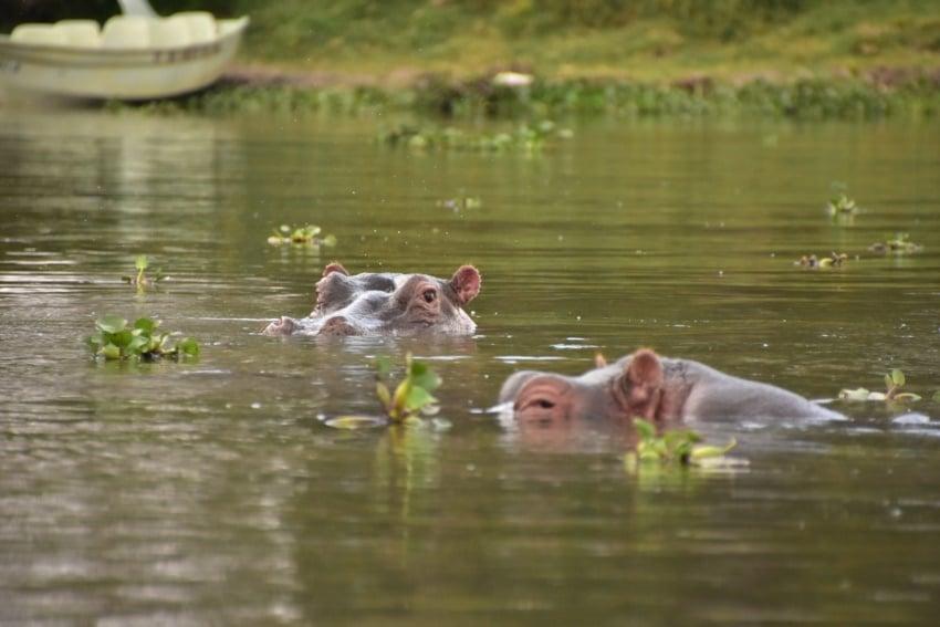 Entspannt baden
