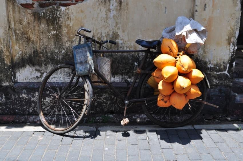 Ein Fahrrad in Galle